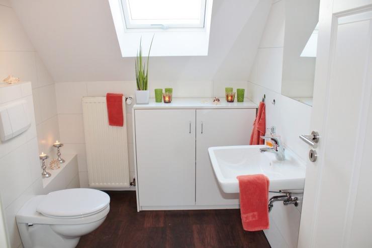 bathroom-1228427_1920.jpg